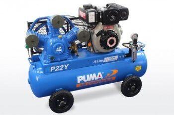 PU P22 Y left 340x224